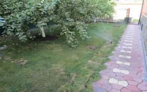 Поселок Шишкин Лес. Автоматическая система полива